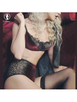 ALINRY bra set sexy lace velvet bralette women lingerie push up thin brassiere high waist panties transparent intimate underwear